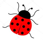 lady-bugs-for Chicago-gardens