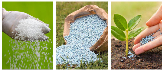 best landscaping fertilizer chicago